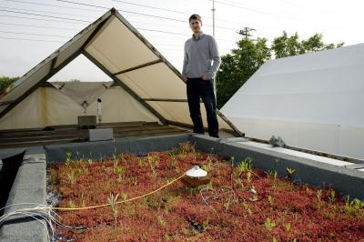 Green roofing keeps temps cool indoors despite the heat outside