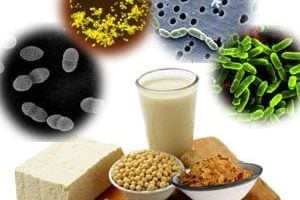 Double coating could help advance the use of probiotics