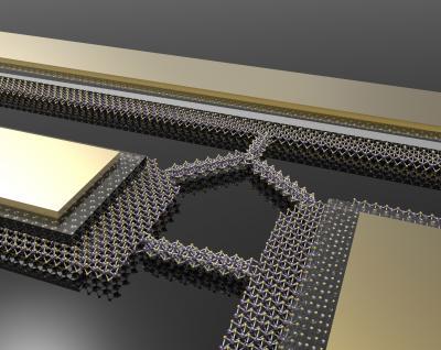 Could hemp nanosheets topple graphene for making the ideal supercapacitor?