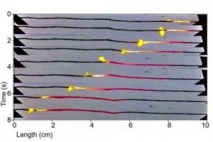 Battery substitute burns fuel-coated carbon nanotubes like a fuse