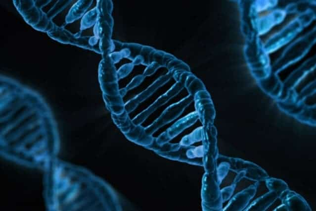 Mutation that disrupts DNA's electrical signaling linked to colon cancer