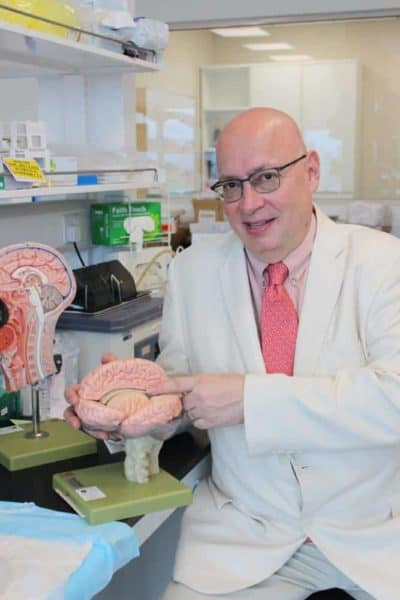 Researchers uncover brain pathway linked to impulsive behaviors