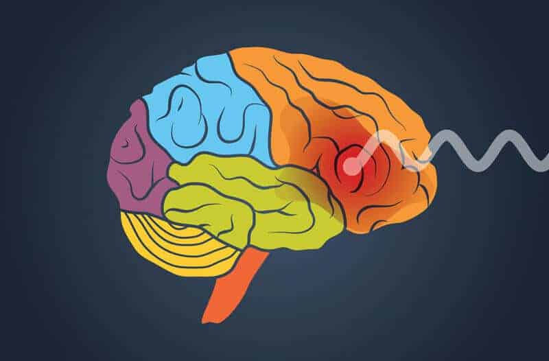 A key to the opioid crisis may be knowing why some brains are more easily addicted