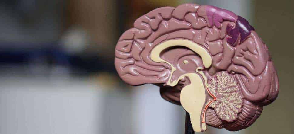 Proton radiotherapy better for pediatric brain cancer patients