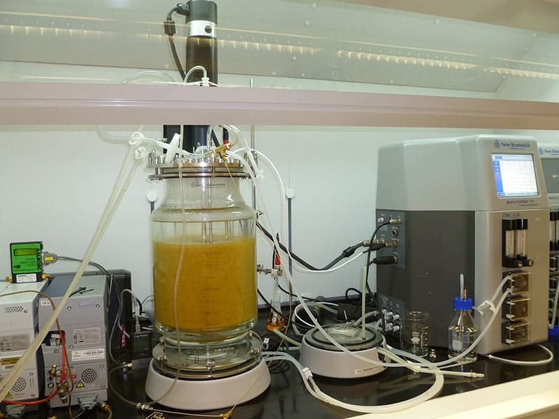 A simplified way to turn food waste into hydrogen energy