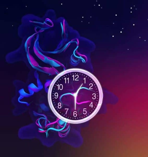Resetting the Biological Clock with Flip of the Molecular Switch