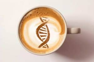 The complex biology behind your love (or hatred) of coffee