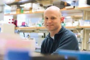 Tiny mineral particles are better vehicles for promising gene therapy