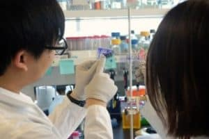 Unlocking how cellular proteins control cancer spread