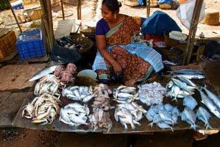Aquaculture's promise and peril