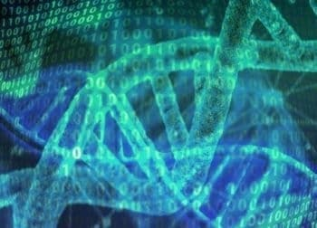 What makes us human? The answer may be found in overlooked DNA
