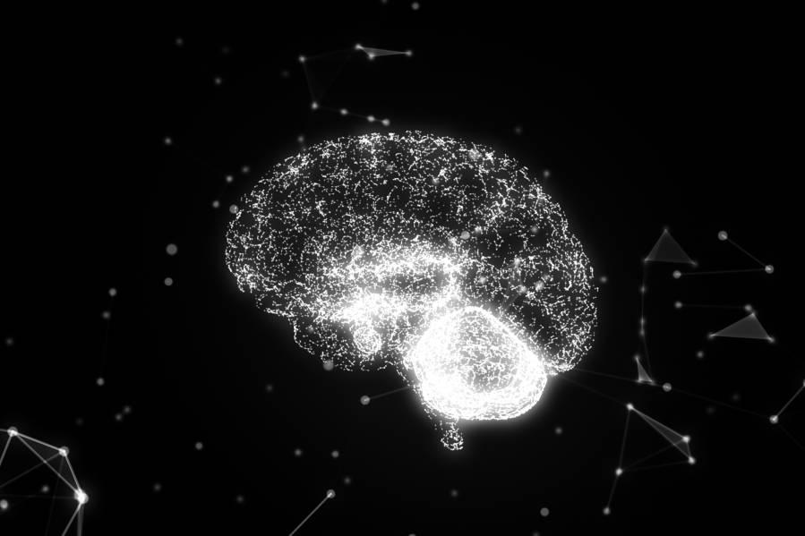 Eating disorder behaviors alter reward response in the brain