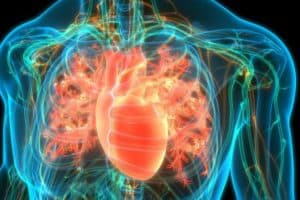 New Generation Artificial Heart Implanted in Patient