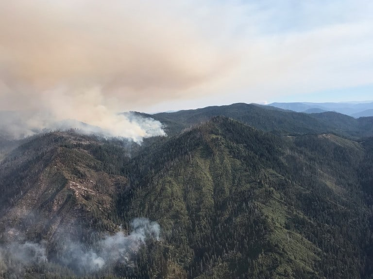 Past fires may hold key to reducing severity of future wildfires in western US