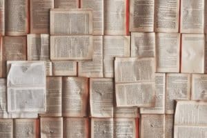 Lack of non-English languages in STEM publications hurts diversity
