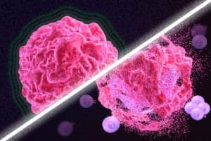 New cancer treatment may reawaken the immune system
