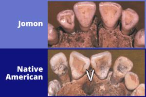 Popular theory of Native American origins debunked by genetics and skeletal biology