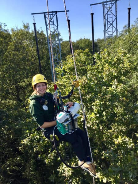 Increasing carbon dioxide in the atmosphere teaches old oaks new tricks